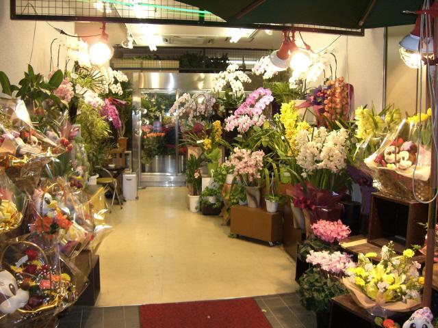 Невесты, галерея цветов и подарков процветание фото