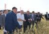 """Аляксандр Лукашэнка ў час наведвання гаспадаркі """"Вясёлка-Агра""""/"""