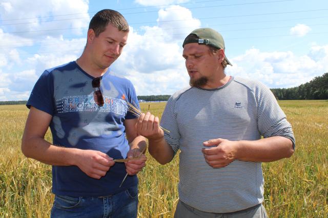 Главный агроном-агрохимик Андрей Марченко и главный агроном Алексей Скороход.