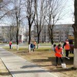 Побелка деревьев на ул. 50 лет Октября.